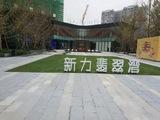 成都新力翡翠湾示范区展示区景观工程项目